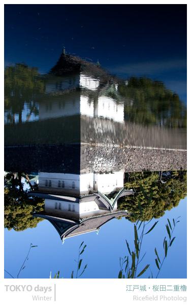 200901_IMG_0352.jpg