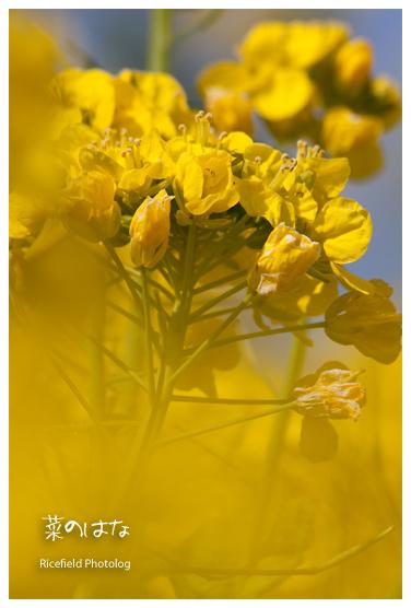 200903_IMG_0736.jpg