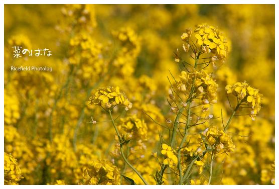 200903_IMG_0726.jpg