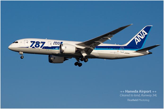 Boeing 787.jpg