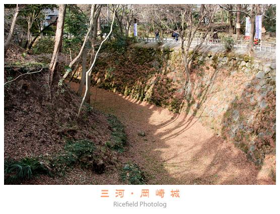 201301_50D_5126.jpg
