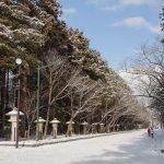 蝦夷新一宮・北海道神宮