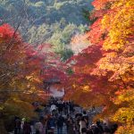 紅葉の京都 '13 嵐山・嵯峨野