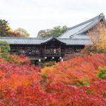 紅葉の京都 '14 #02 東福寺