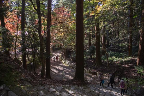 紅葉の京都 '14 #03 高山寺