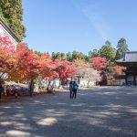 紅葉の京都 '14 #06 神護寺