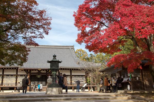 紅葉の京都 '14 #08 仁和寺
