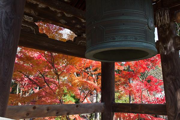 紅葉の京都 '14 #12 真如堂