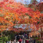 紅葉の京都 '14 #13 永観堂