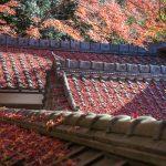 紅葉の京都 '14 #17 毘沙門堂