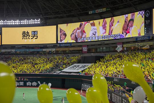 GO! Hawks! '15 福岡ドーム