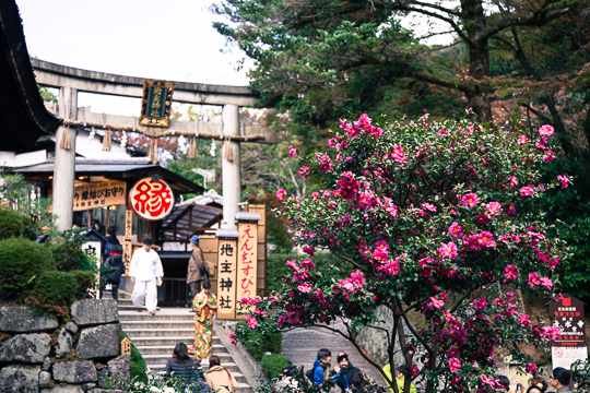 紅葉の京都 '15 清水寺・高台寺