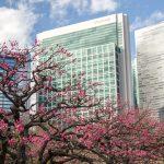 春の東京散歩 '16 浜離宮