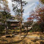 落葉の京都 '17 #3 旧三井家
