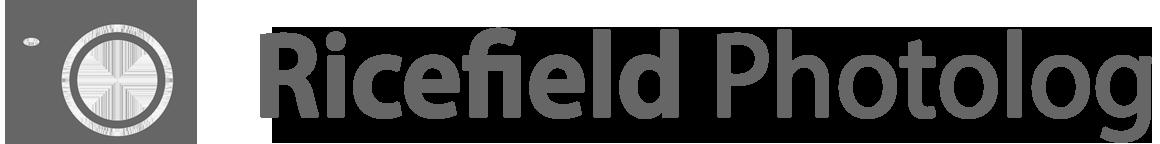 Ricefield Photolog